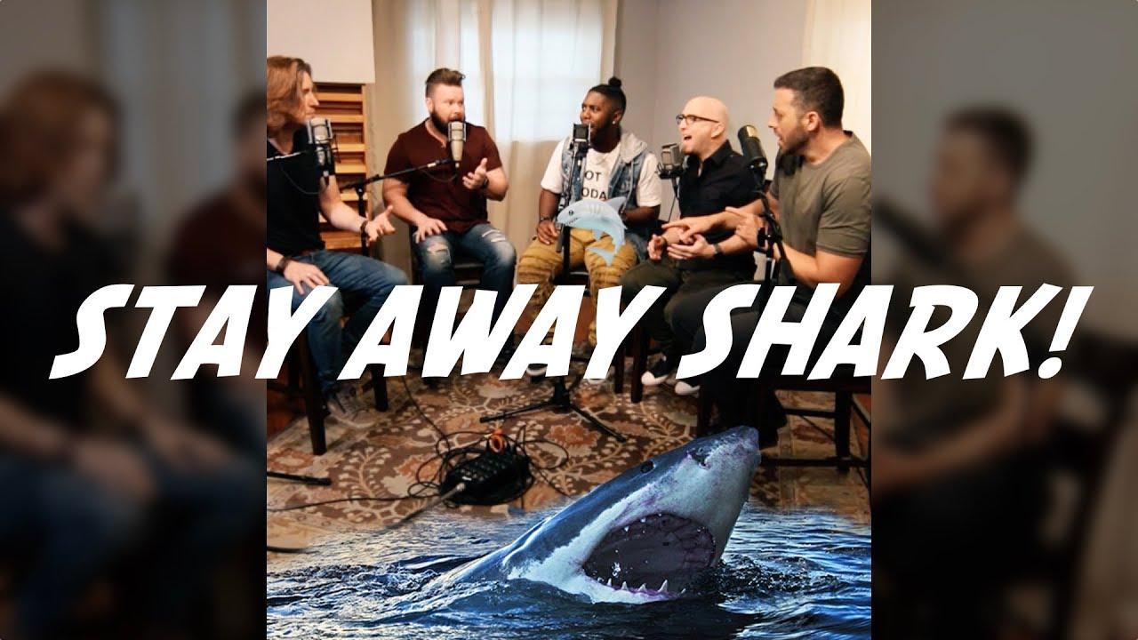 Stay Away Shark!