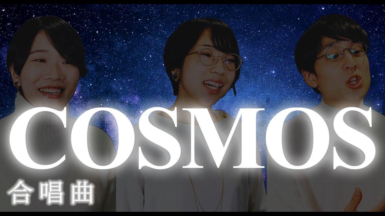 COSMOS(コスモス)
