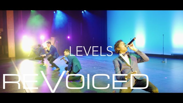Levels | REVOICED