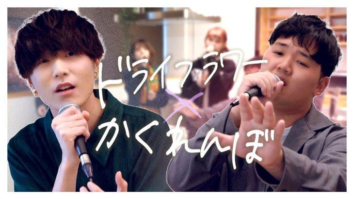 """【切なさMAX】""""ドライフラワー""""と""""かくれんぼ"""" 同時に歌ってみた(cover)"""